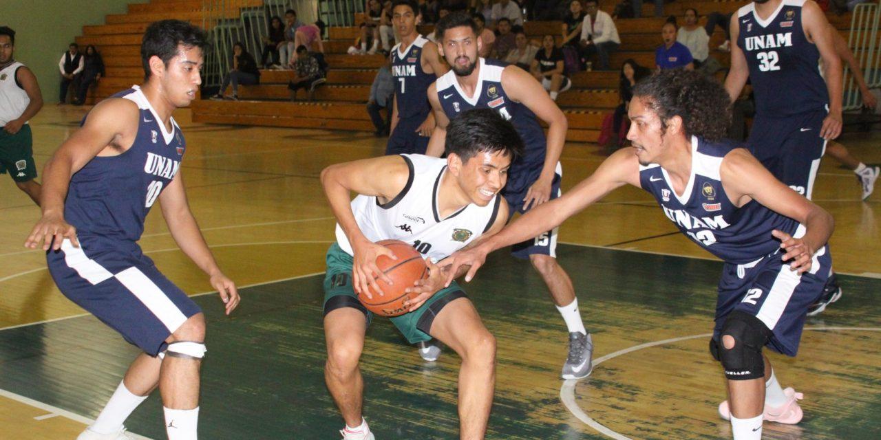Los Pumas consiguen la victoria en Toluca