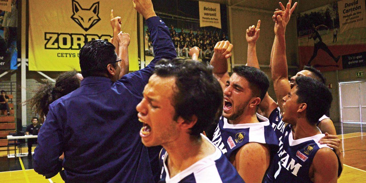 Los Pumas de la UNAM ascienden a la máxima categoría