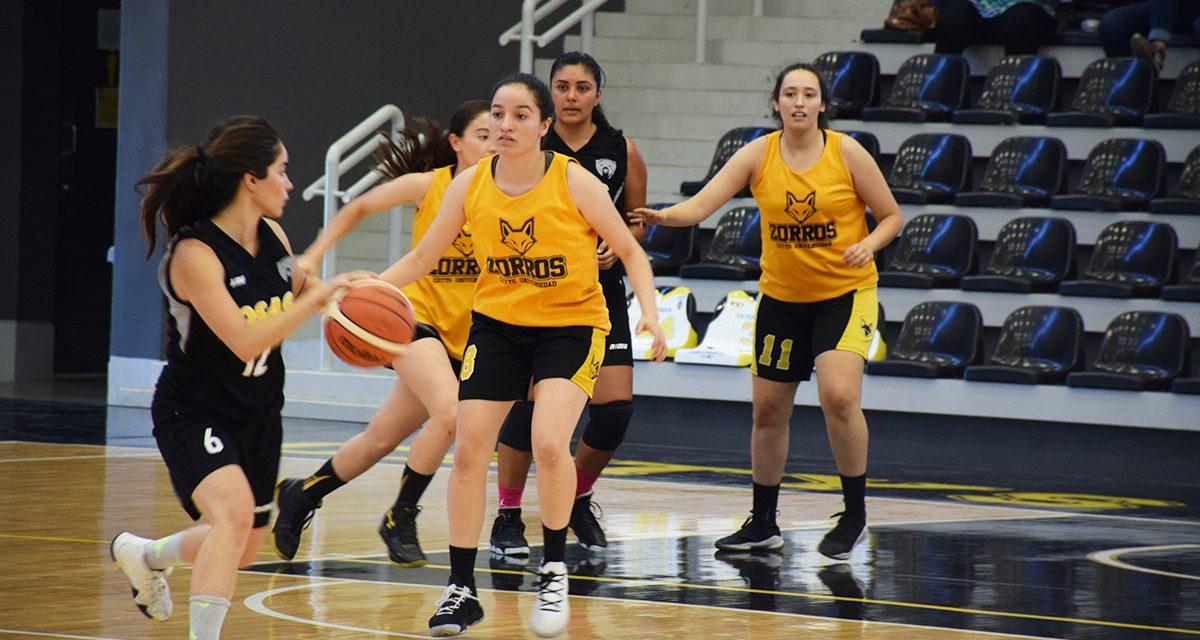 El CETYS Universidad con experiencia y juventud abren la temporada 2019-20